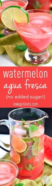 Picture of watermelon agua fresca picture
